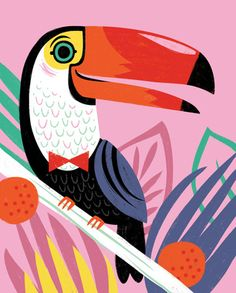 Toucanet clipart real animal #2
