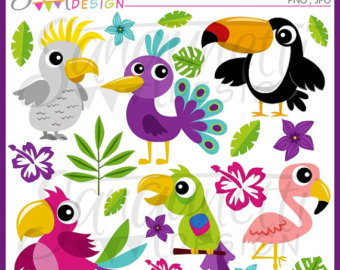 Toucanet clipart real animal #7