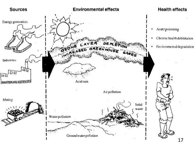 Toxic clipart health hazard Effect Environment In by 16;