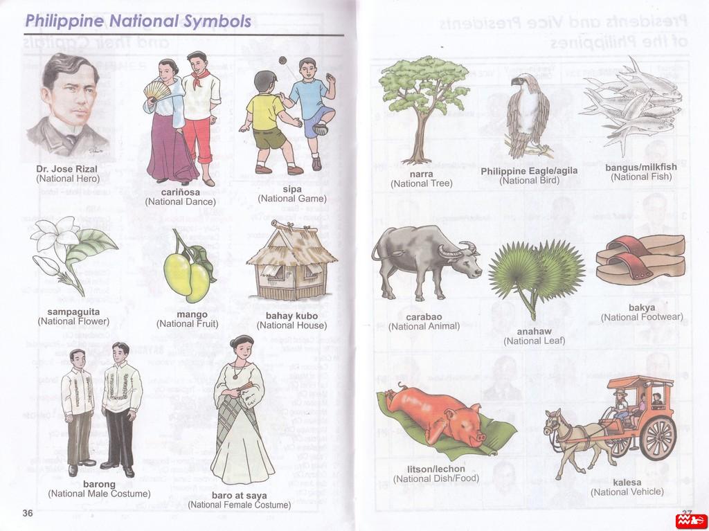 National Philippine Symbols Bituin Air
