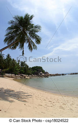 Tranquil clipart beach shore #14