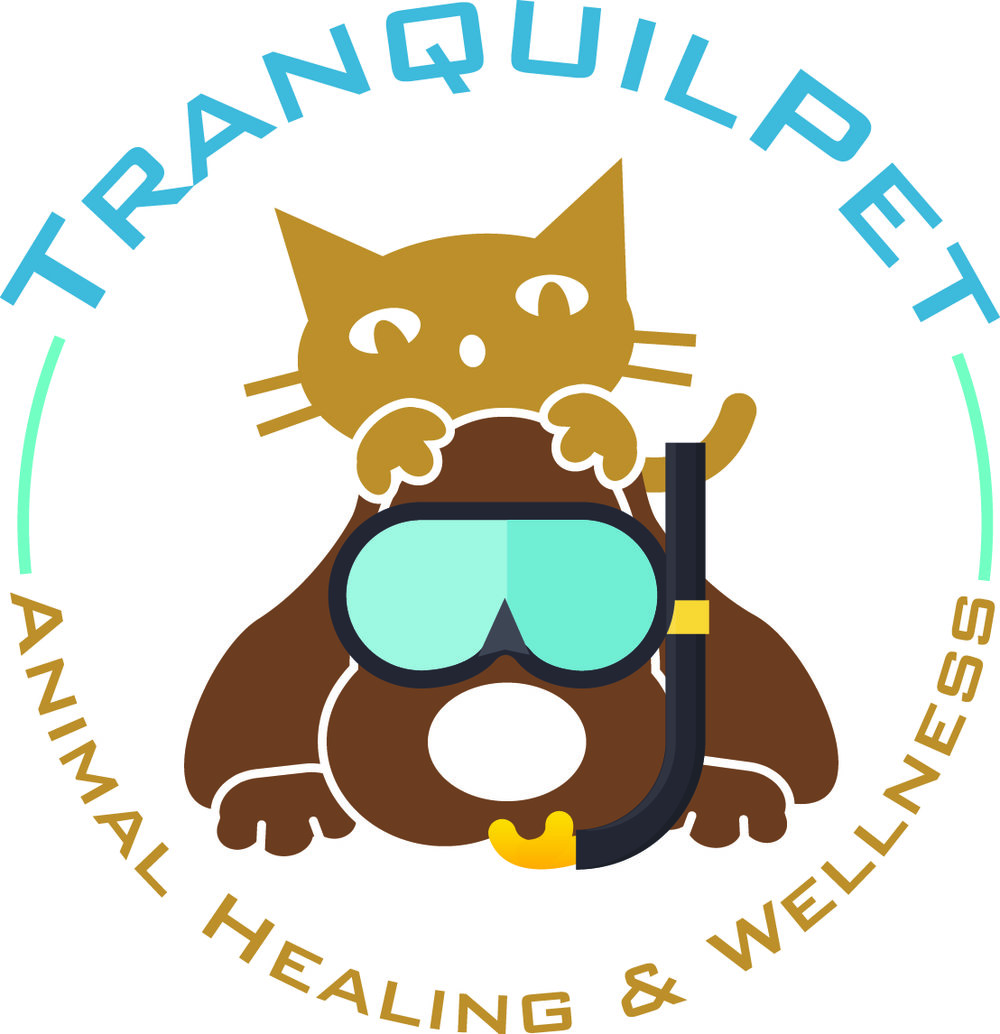 Tranquil clipart worried parent #9