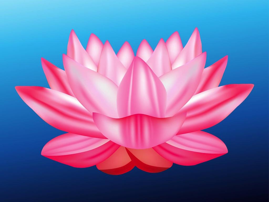 Scenery clipart lotus flower #2