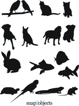 Trap clipart animal clinic Animal hospital 54 ideas about