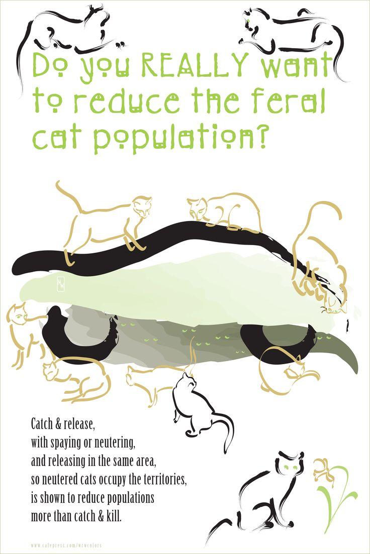 Trap clipart animal clinic Neuter Return 32 on Trap