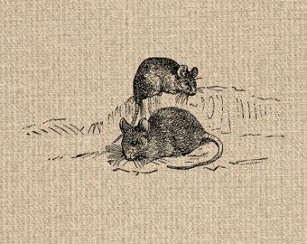 Trap clipart antique animal Printable Graphics INSTANT Antique Mouse