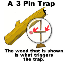 Trap clipart simple A How Log to simple