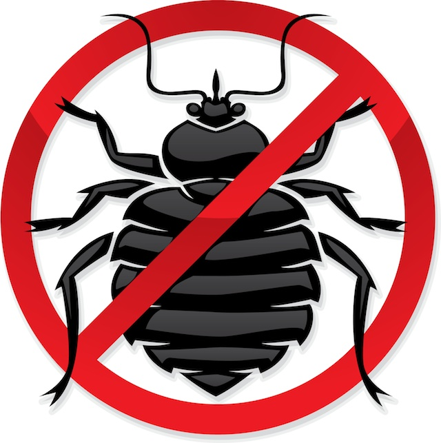 Trapped clipart infested Bed Clipart do bedbugs Like?