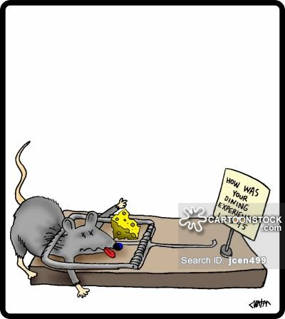 Trapped clipart mouse trap Cartoon funny 3 Trap Mouse