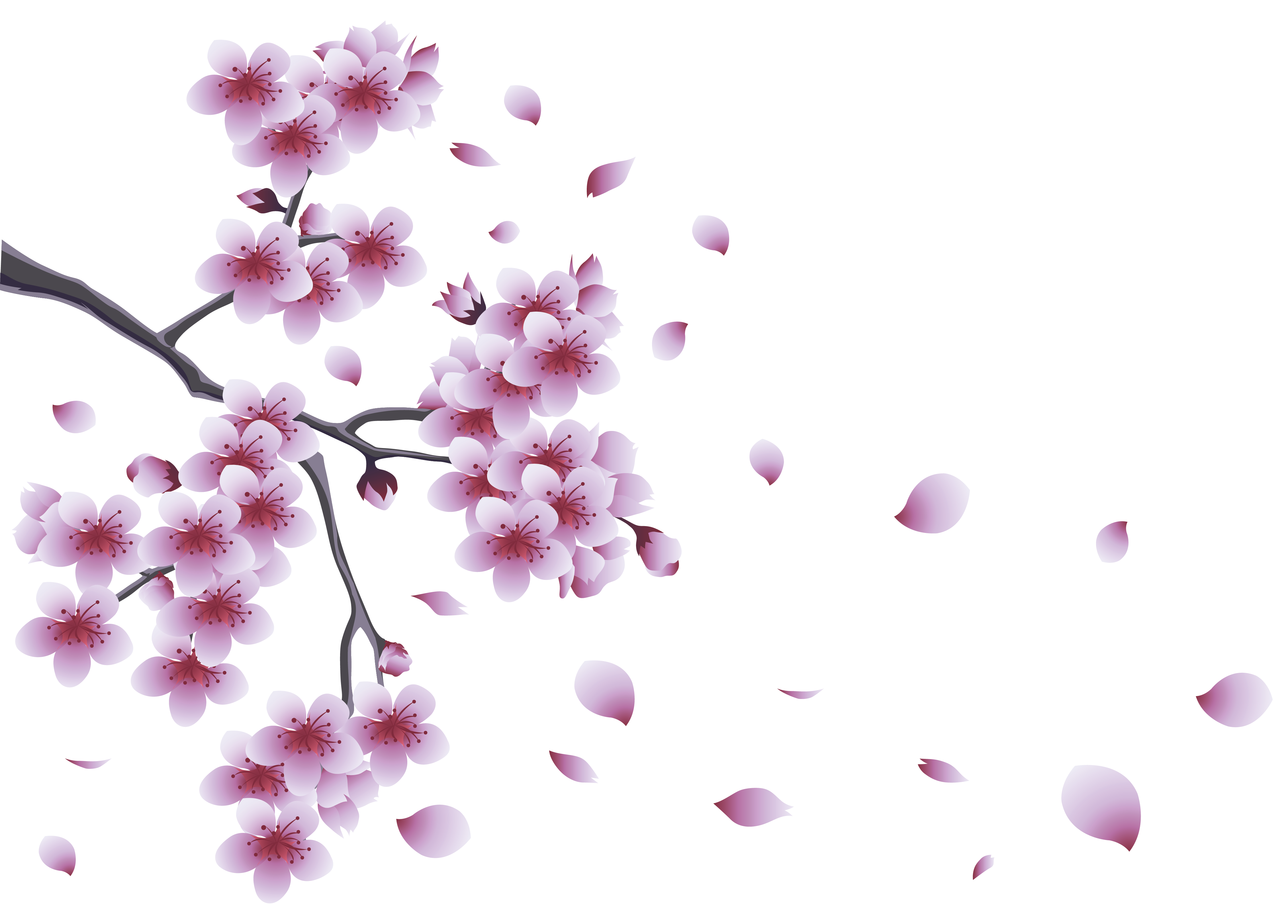 Branch clipart flower branch Clipart Clip Clip Art –