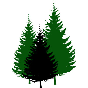 Tree clipart forest tree #14