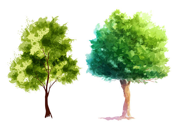 Tree clipart high resolution N01 Vector High PNG on