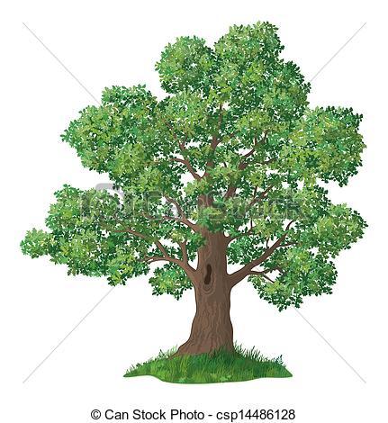 Tree clipart oak tree Oak Clipart tree fall schliferaward