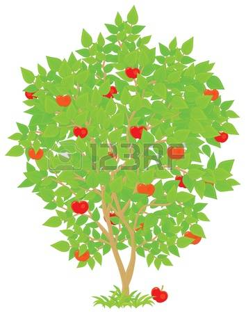 Tree clipart rose apple #7