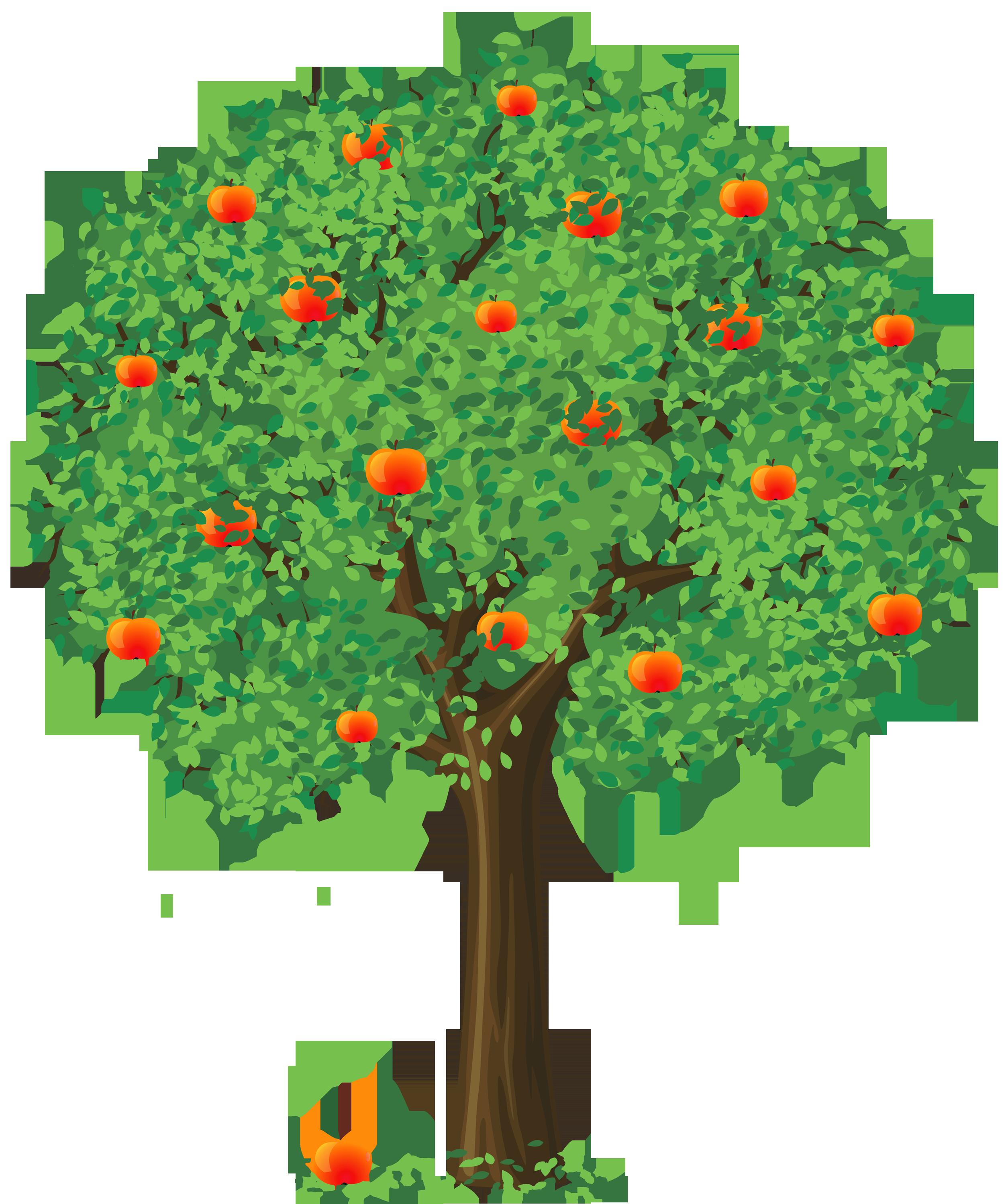 Tree clipart santol #10