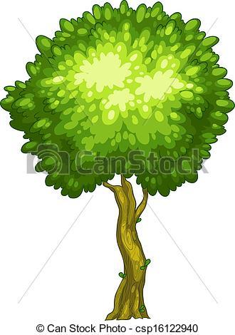 Tree clipart tall #9
