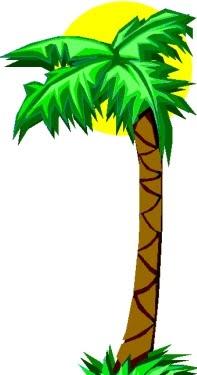 Tree clipart tall #15