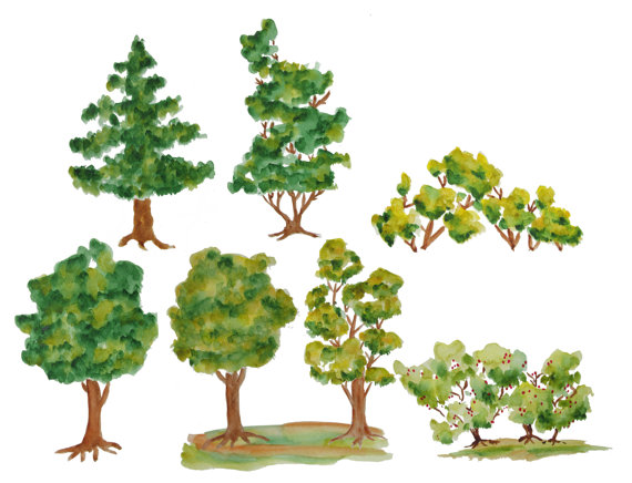 Wood clipart colorful tree Wood clip tree Trees clipart