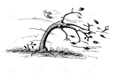 Tree clipart wind blowing #12