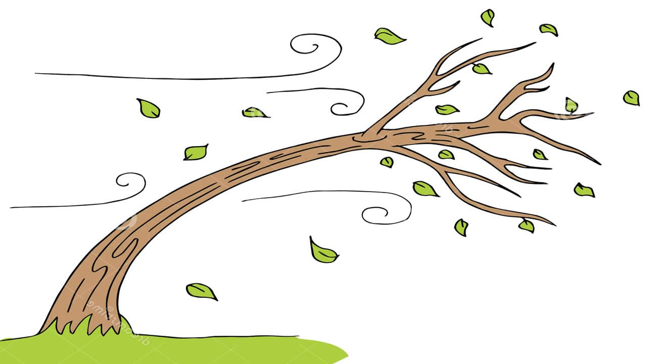 Tree clipart wind blowing #15