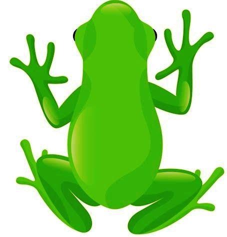 Tree Frog clipart creepy crawly #13