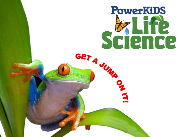 Tree Frog clipart life sciences #10