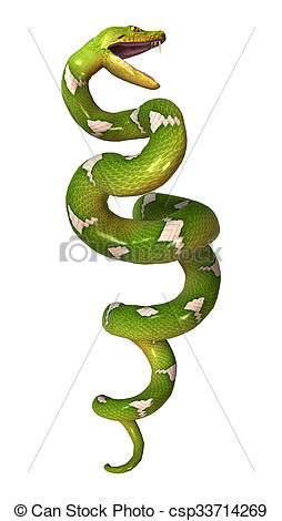 Tree Python clipart Python White Python Tree on