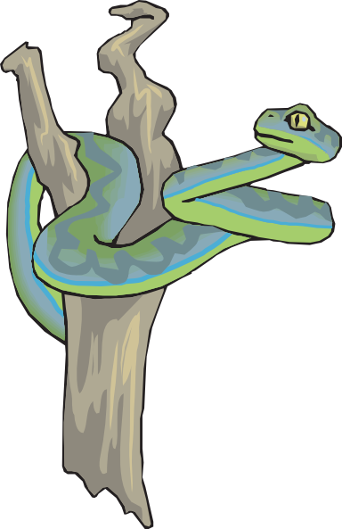 Tree Snake clipart In Curled com this Snake