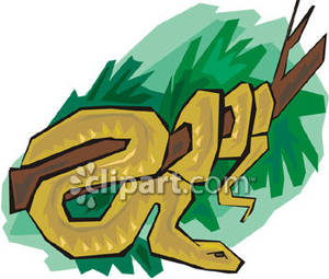 Branch clipart snake A Clipart Picture Brown Branch