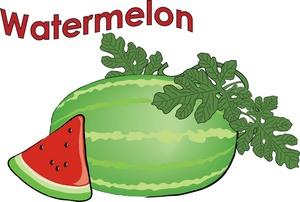 Watermelon clipart triangle Clipart watermelon%20clipart Watermelon Free Slice
