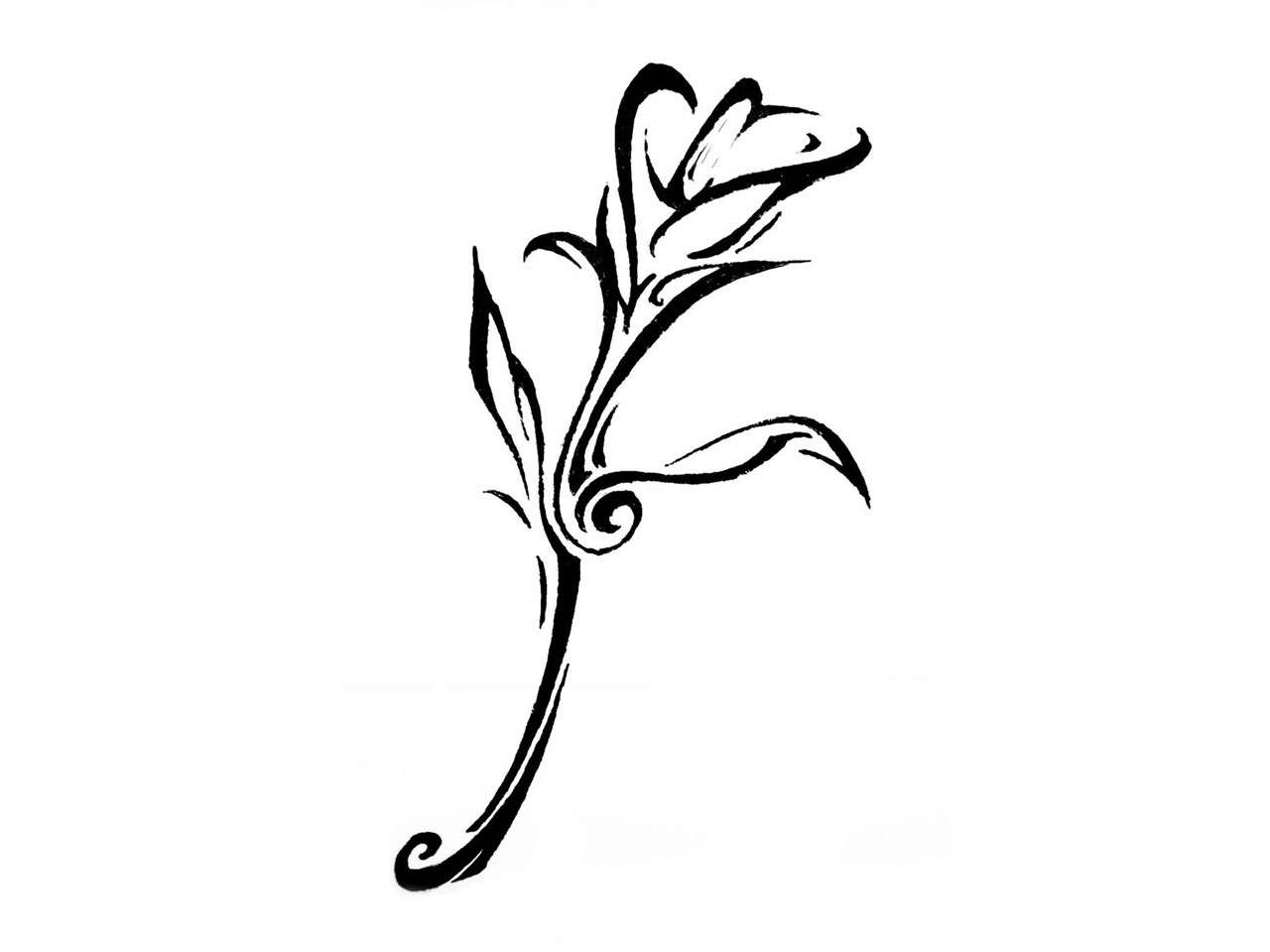Simple clipart lily #11