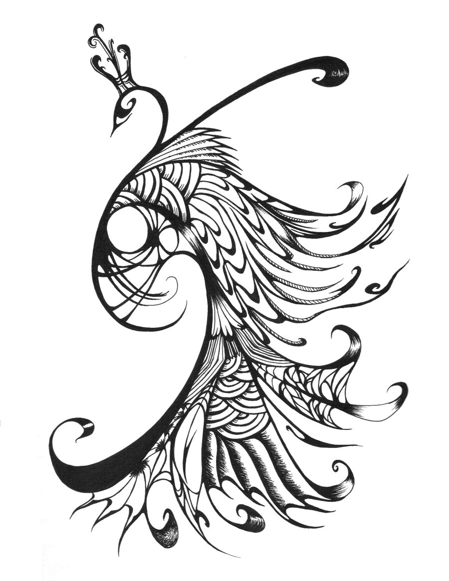Peacock clipart sketch And Clip Clipart Designs White