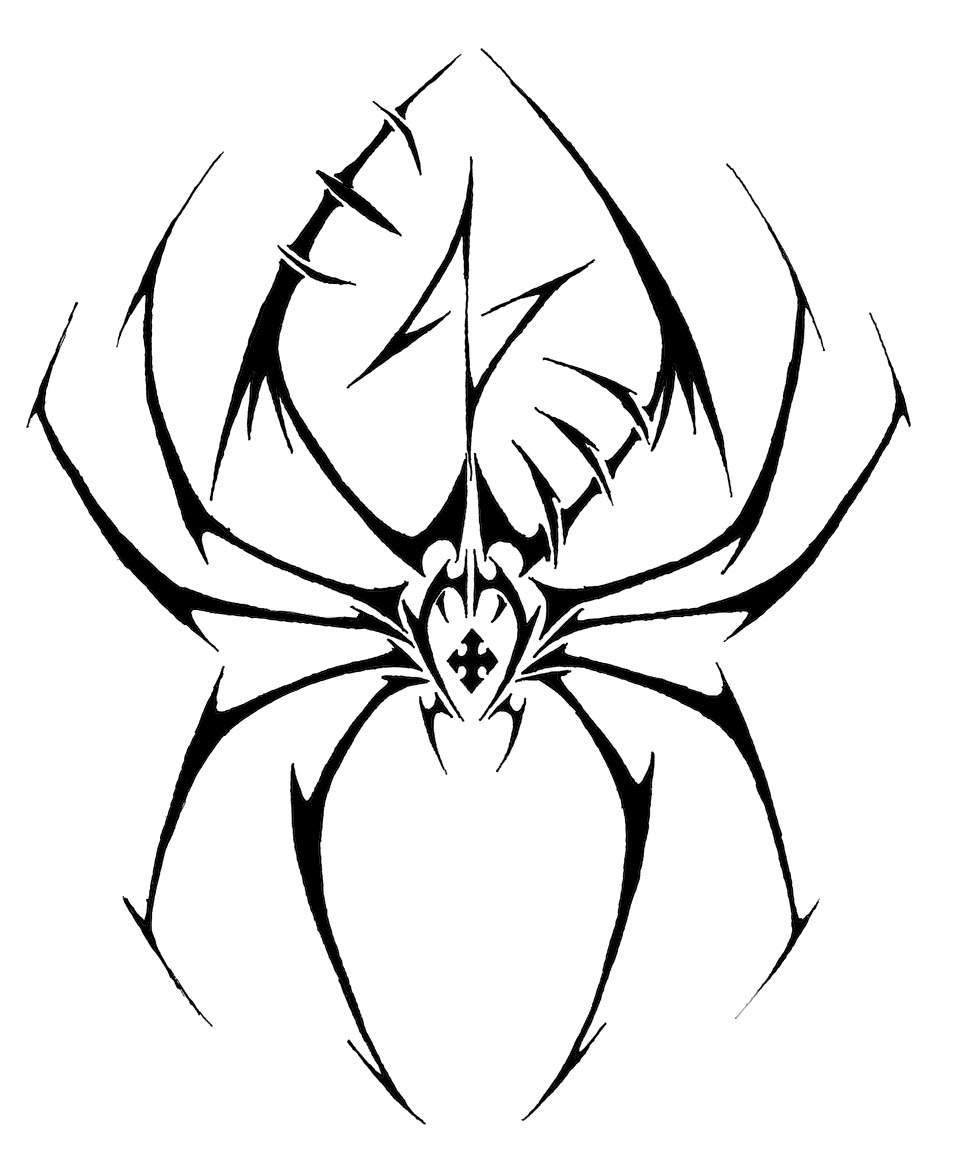 Drawn spider web tribal Spider And photo#18 tattoo Skull