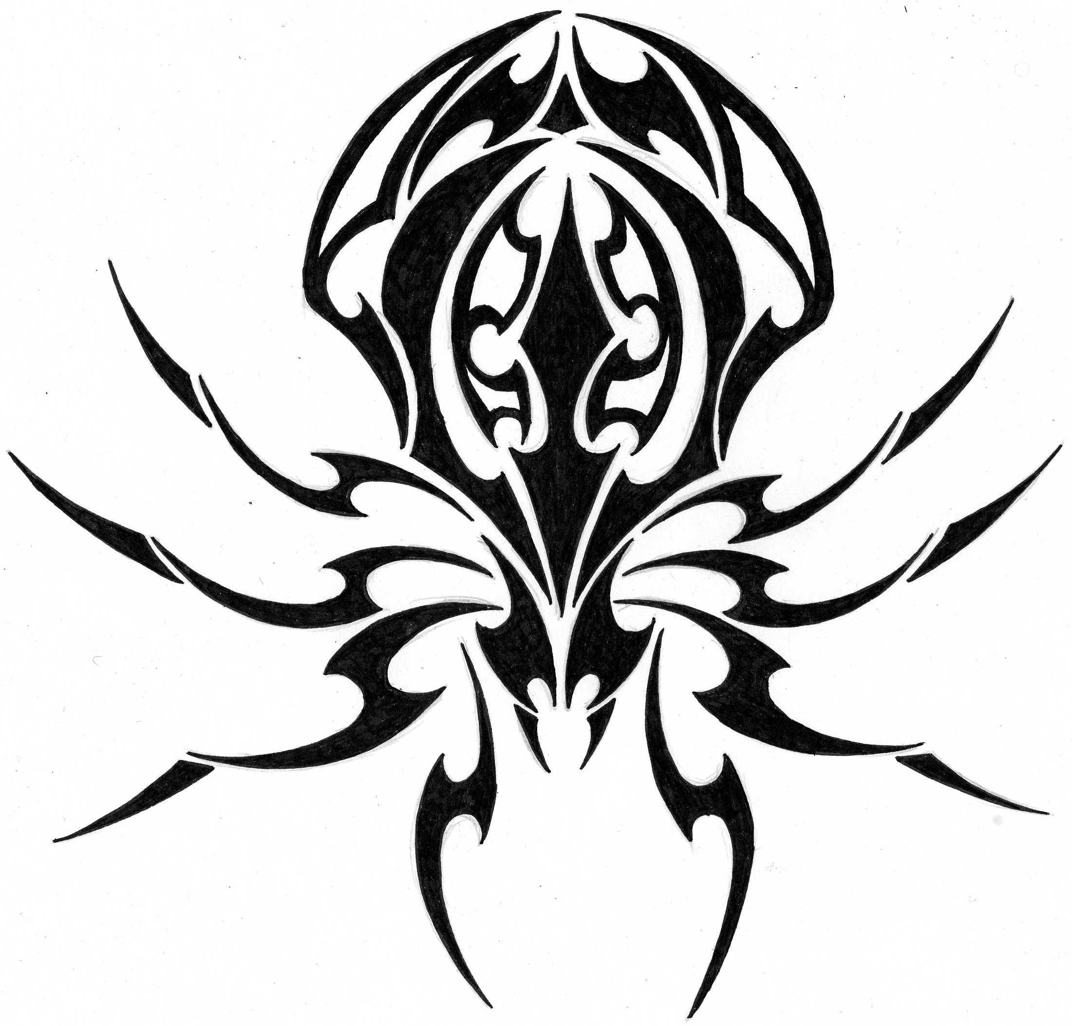 Drawn spider web tribal Meaning Designs Tattoos For Ideas