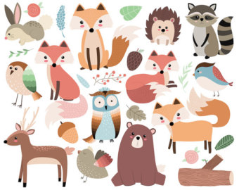 Baby Animal clipart hand drawn & 26 Clip JPG Clipart