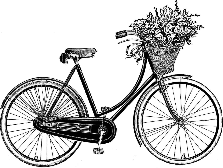 Basket clipart bike Pinterest white art this on