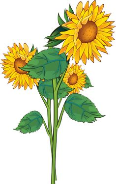 Triipy clipart sunflower Art Flower This Grab Clip
