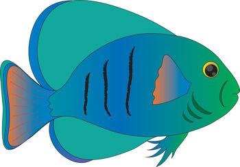 Tropical Fish clipart Com Tropical Clipart Tropical Free