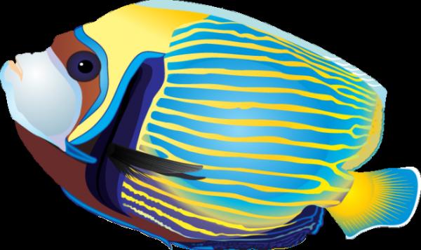 Tropical Fish clipart Fish 4 clip 4 fish