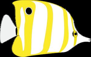 Angelfish clipart tropical fish Com vector fish clip angel