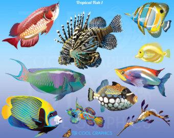 Angelfish clipart sea creature Printable Clip PNG Art Angelfish