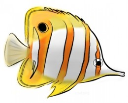 Tropical Fish clipart butterfly fish #6