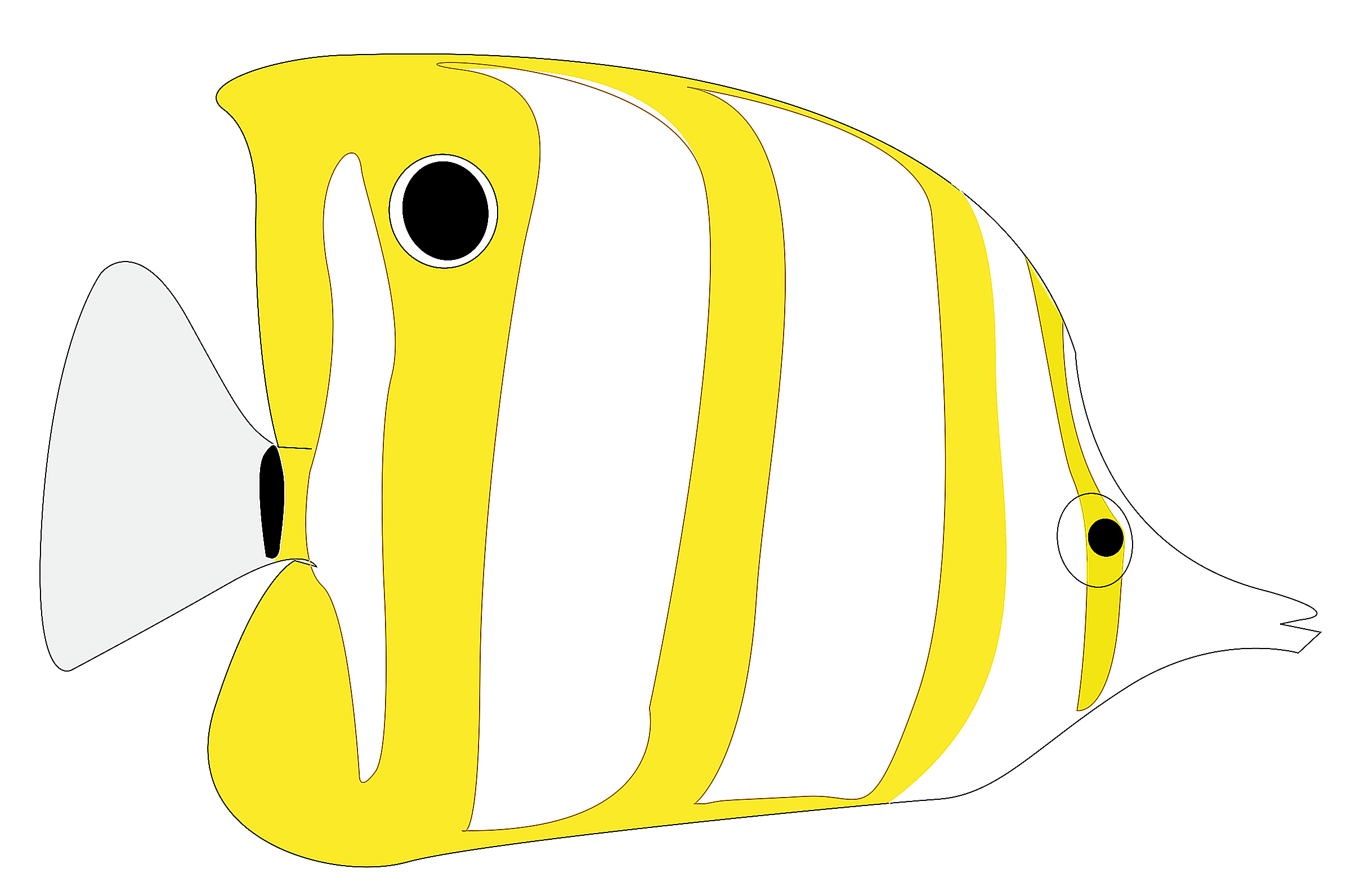 Tropical Fish clipart butterfly fish #14