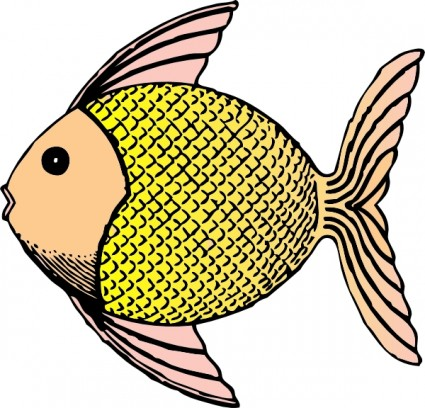 Angelfish clipart realistic fish Free download Art Free Art