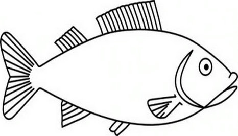Fins clipart fish drawing 72 Fish clipart Fish cliparts