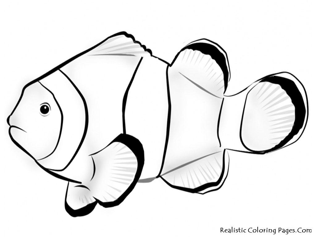 Tropical Fish clipart nemo fish #3