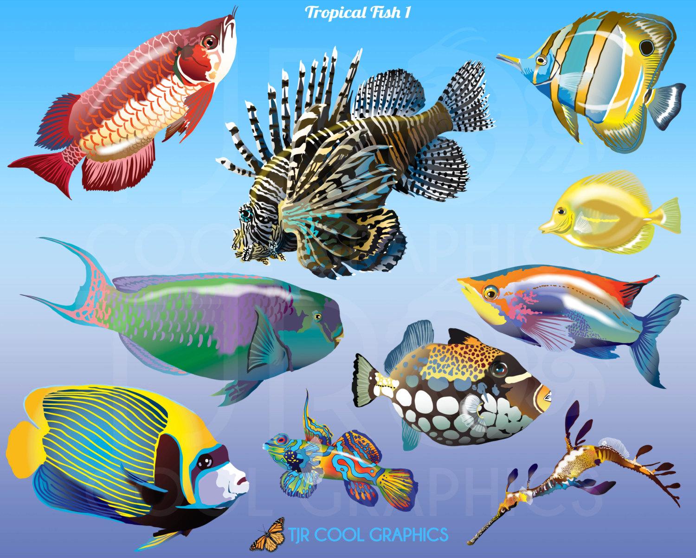 Angelfish clipart beautiful fish  Tropical Clip PNG file