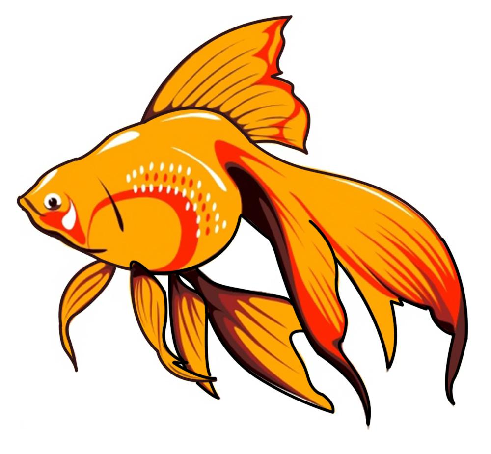 Graphics images clip School fish