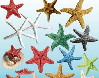 Tropical Fish clipart starfish #15