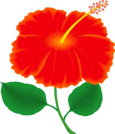 Tropics clipart Flower Art Free Art Hawaiian
